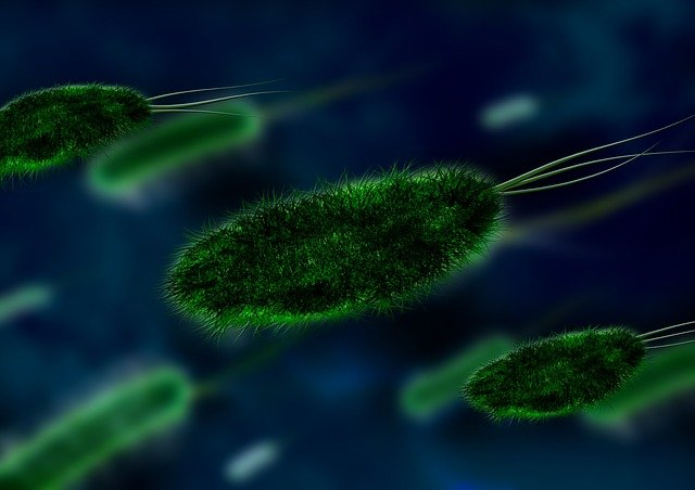 green germs and bacteria